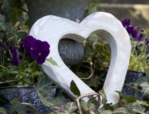 Coeur au jardin