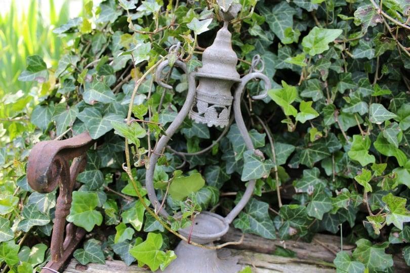 Lanterne cassée au jardin