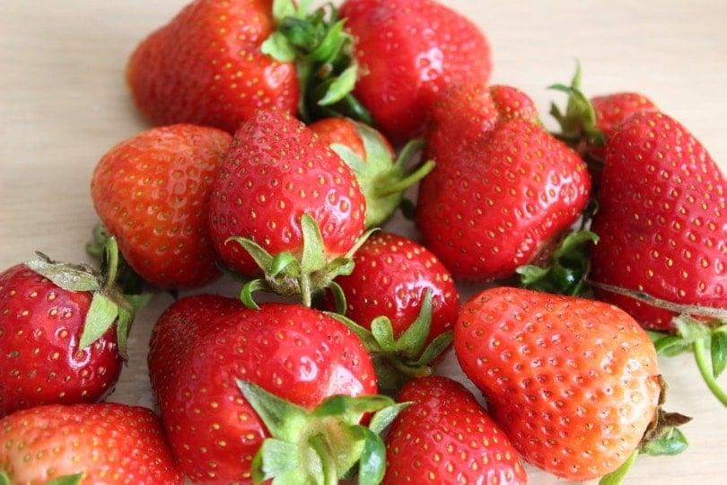 fraises sur plan de travail