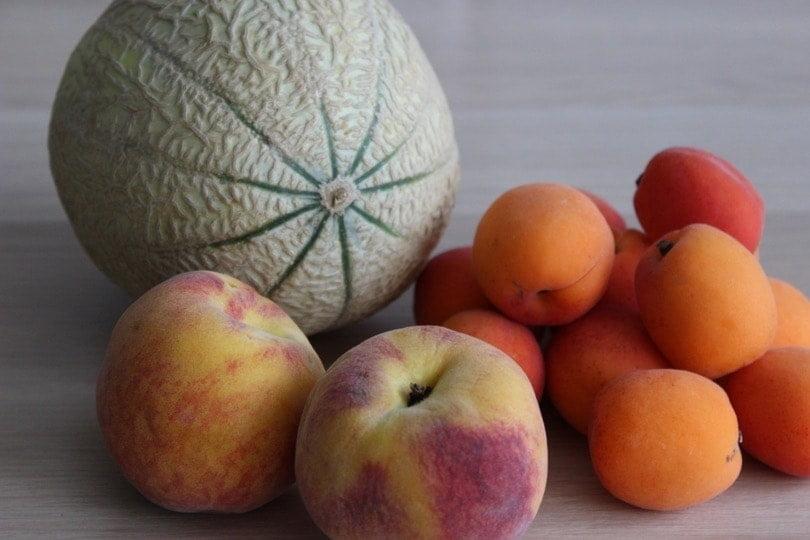 melon peche abricot
