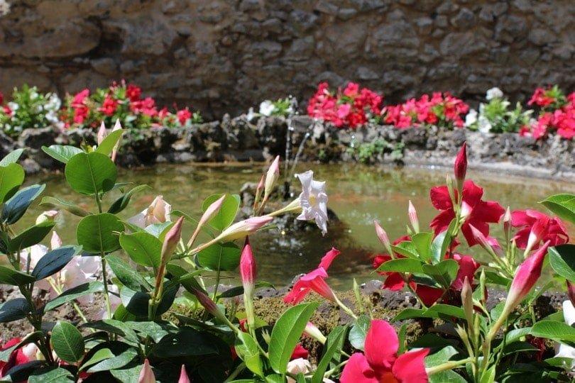 bassin villa rufolo