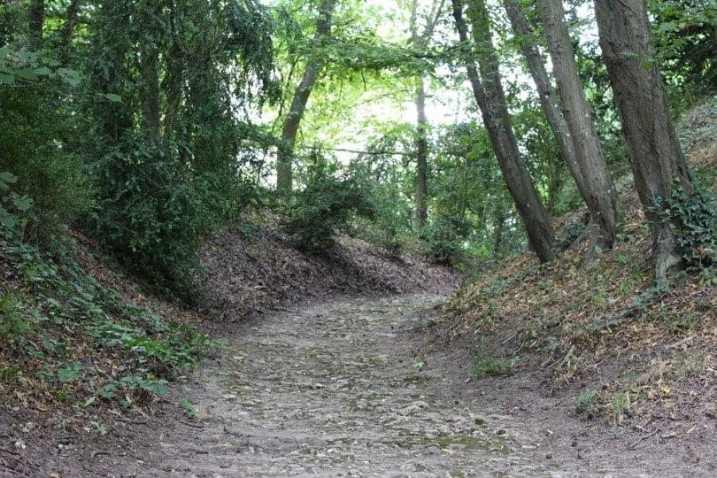 chemin de pierres du hameau