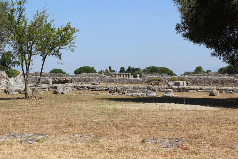 vue panoramique du temple d'Athena