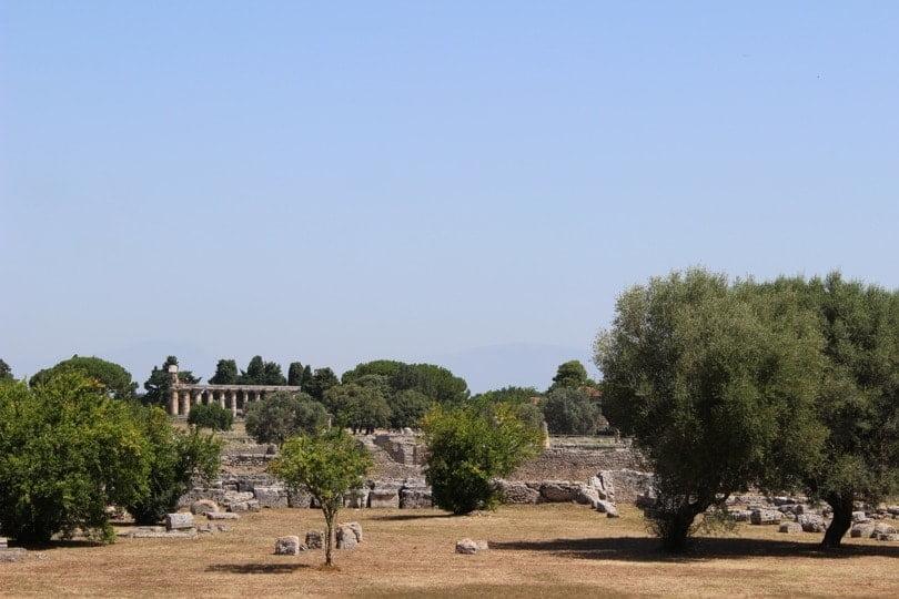 vue panoramique temple d'athena paestum