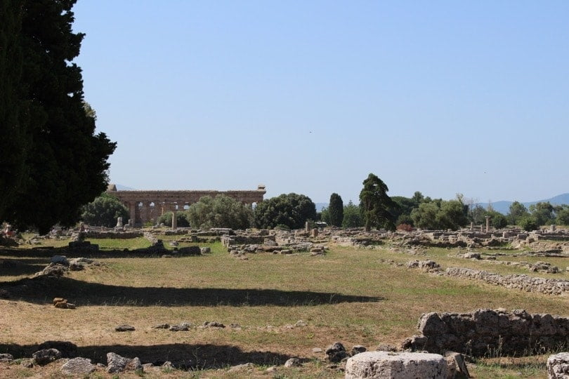 vue temple de Neptune