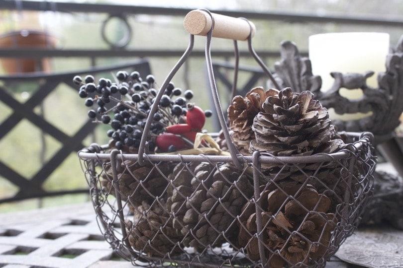 panier pommes de pin et bouquet d'automne