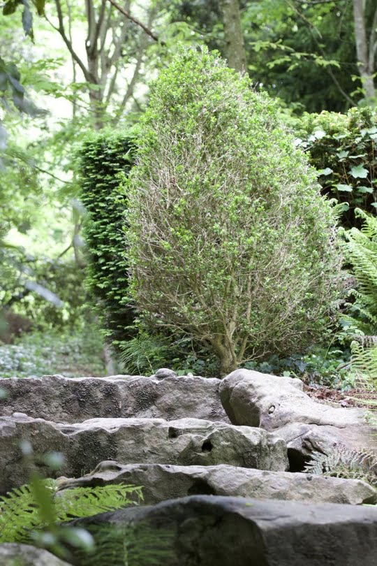 Premier regard sur le parc du château de Monte Cristo