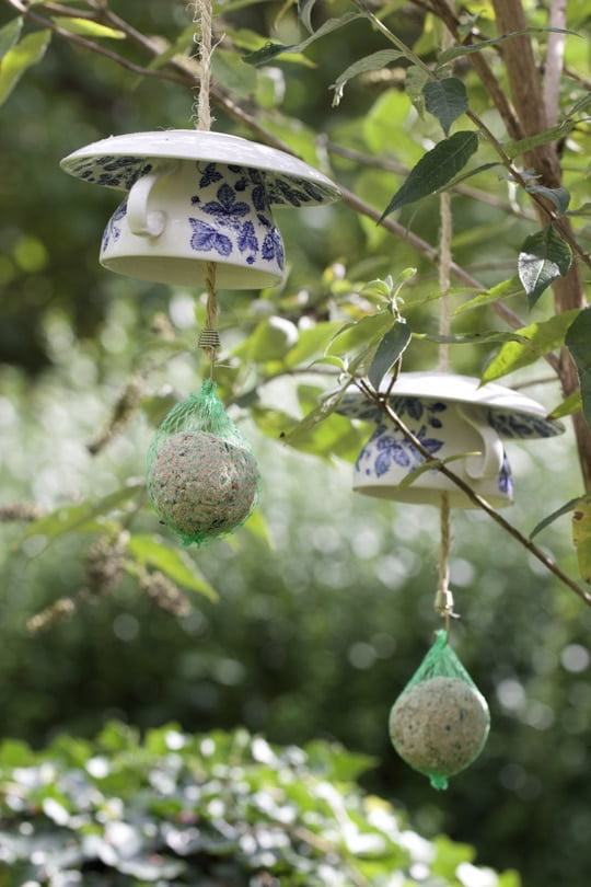 Mangeoires à oiseaux originales avec des tasses à café suspendues dans mon arbre à papillons