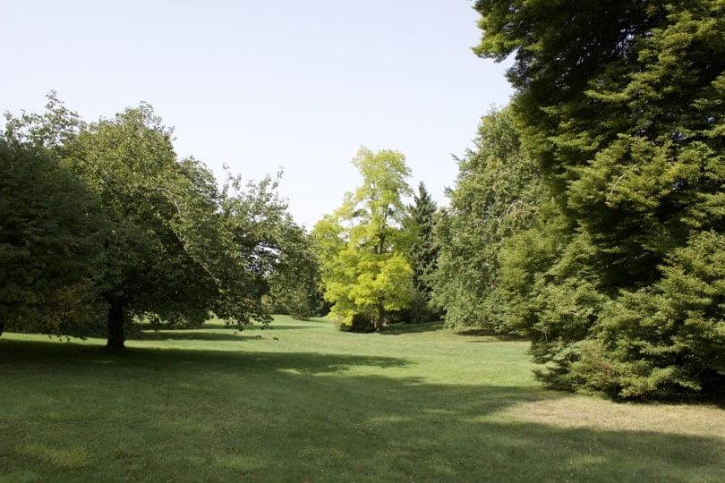 Parc du château de Bizy à Vernon
