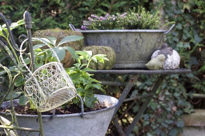 Comment embellir son jardin recyclez des objets en zinc for Comment embellir son jardin