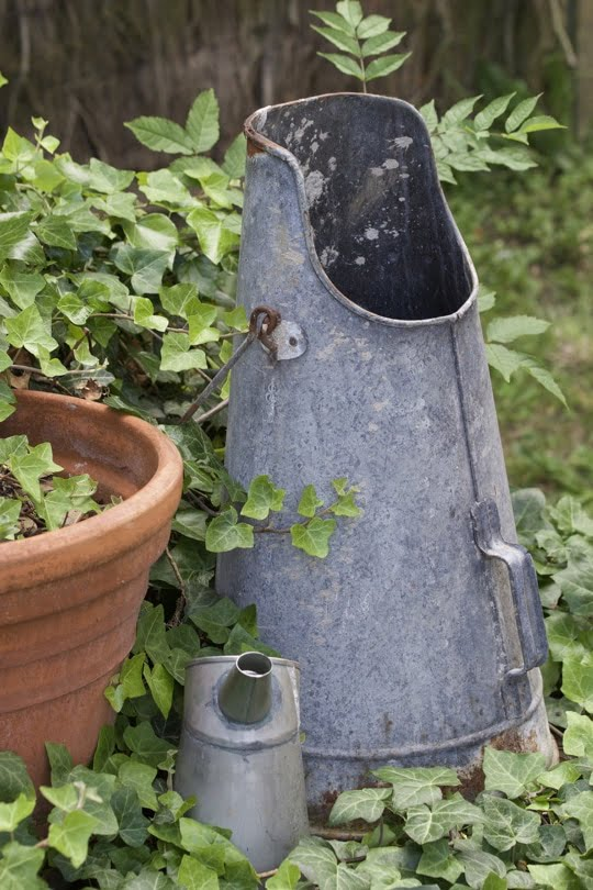seau à charbon en zinc dans le jardin