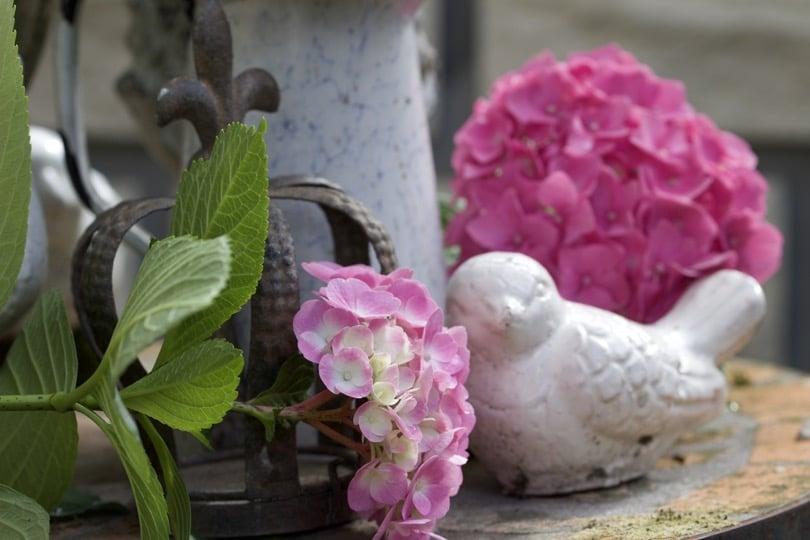 Bouquet d'hortensias au jardin et couronne pour un petit air Shabby chic au jardin