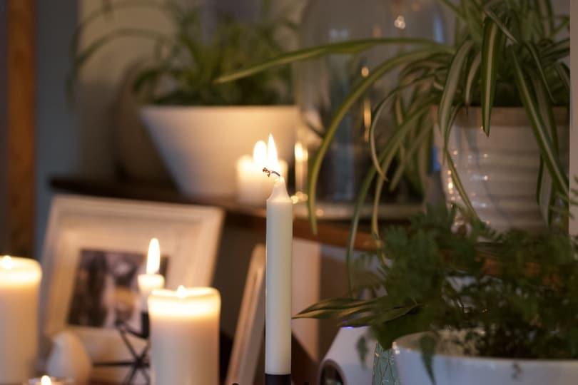 Bougies et plantes pour le hygge