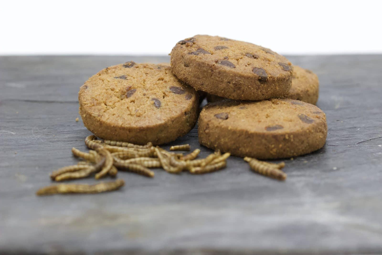 Biscuits Microdélices amande et chocolat - Entomophagie sucrée