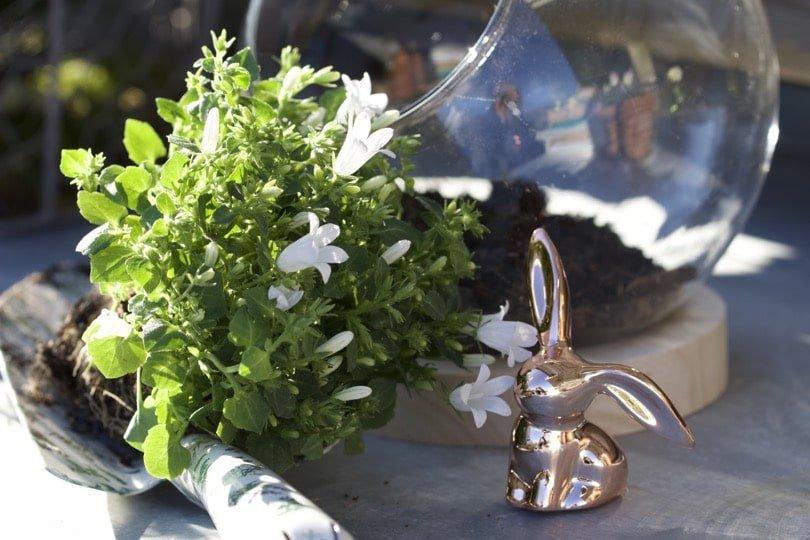 Réalisation du mini jardin pour décorer la maison à Pâques