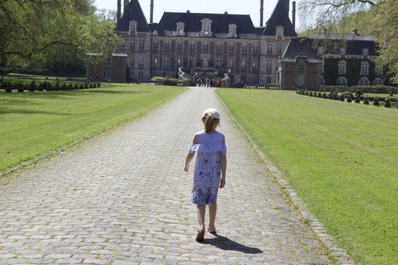 Rose sur l'allée d'honneur du château de Courances