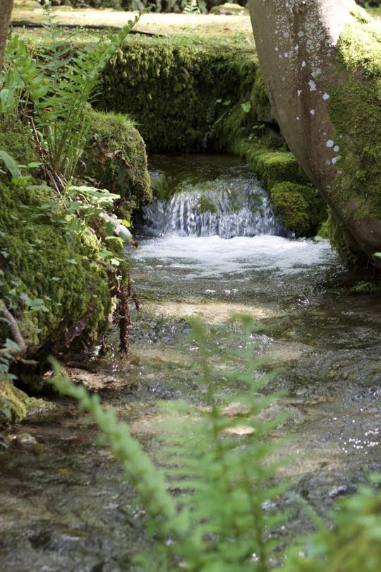 Source dans le parc du château de Courances