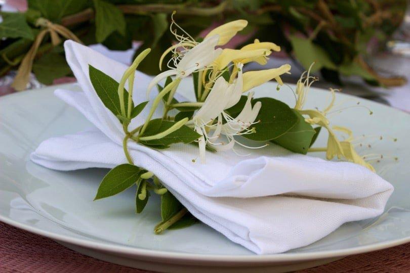 Lierre et chèvrefeuille pour une table d'été romantique.