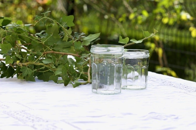 Lierre et pots de confiture pour une table d'été romantique.