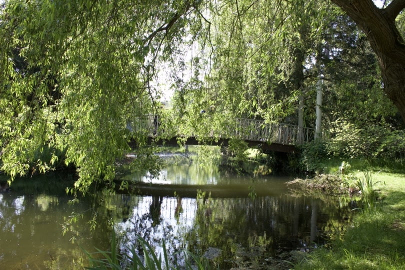 Arboretum de la Vallée-aux-Loups.