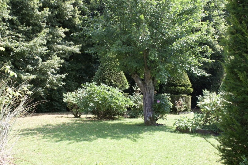 Jardin de la serre au château d'Ambleville
