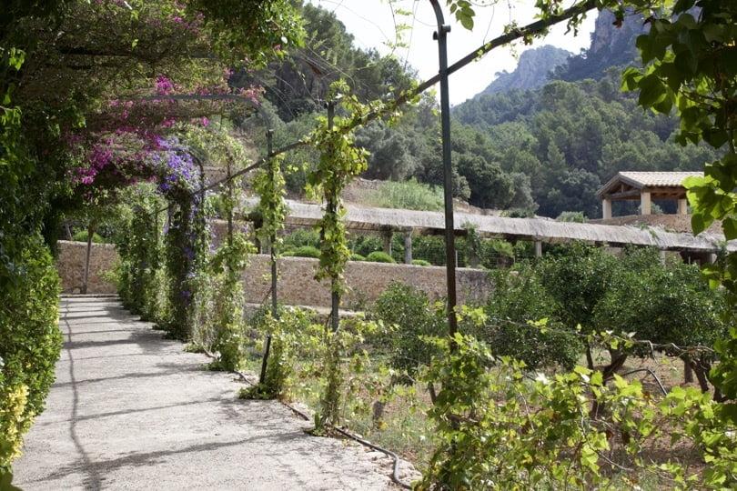 Pergola moderne des jardins d'Alfàbia
