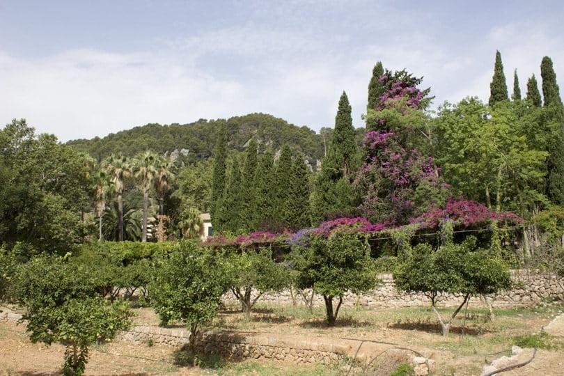 Les jardins d'Alfàbia à Majorque