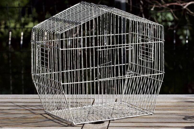 Détourner une cage à oiseaux au jardin.