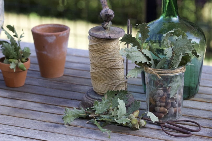 Décorer des pots de confiture avec des branches de chêne pour une décoration d'automne.
