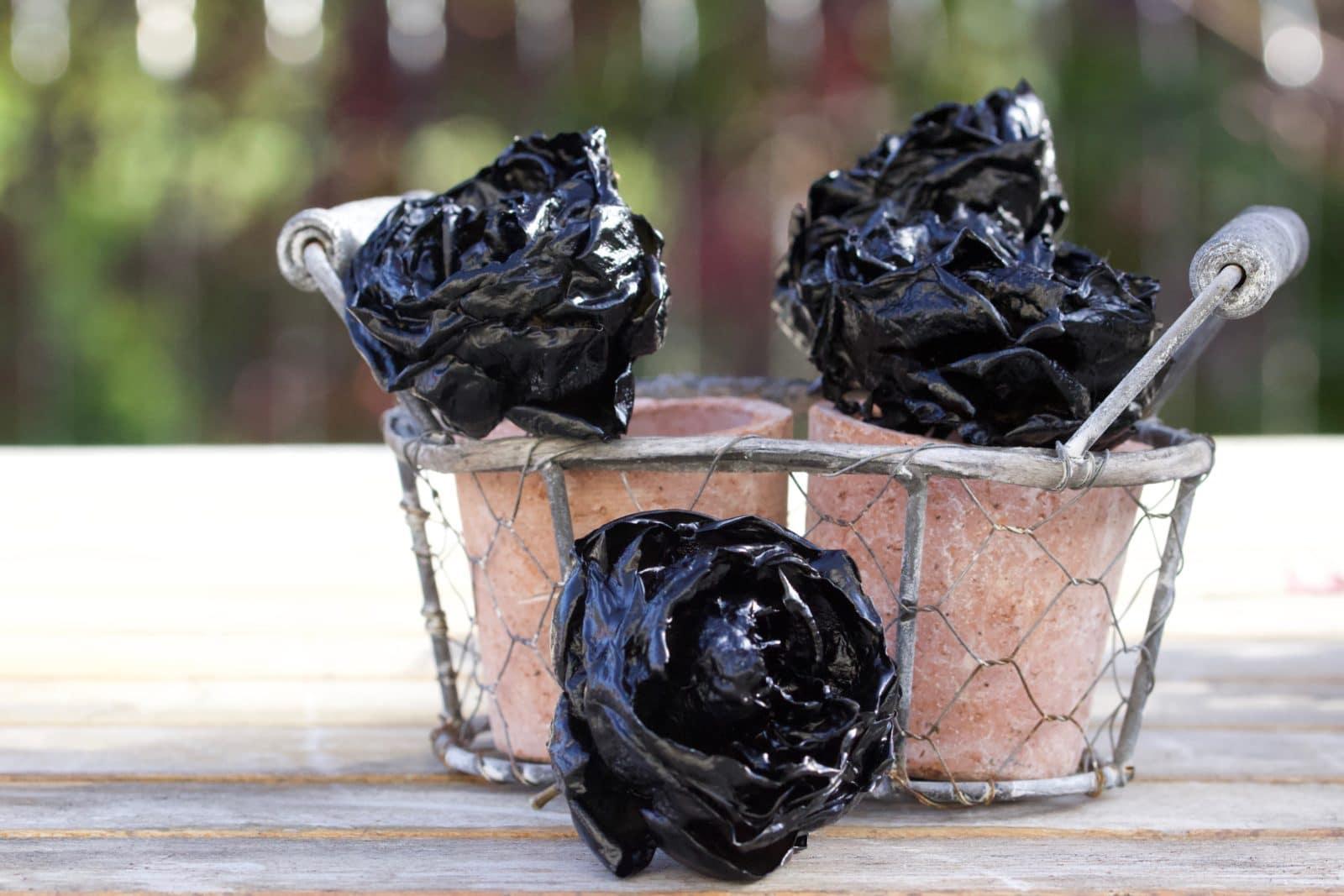 Roses noires pour Halloween
