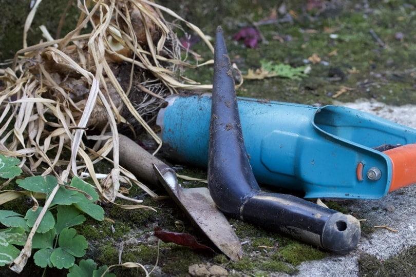 Mes outils pour planter les bulbes