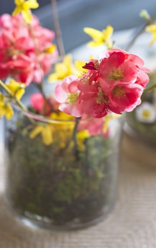 Bouquet de forsythia et de cognassier du Japon
