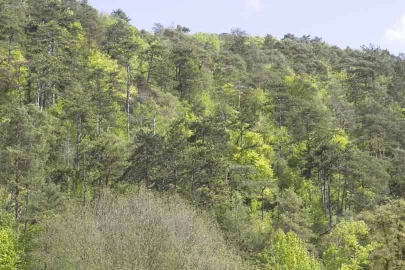 Collines de la vallée de l'Eure