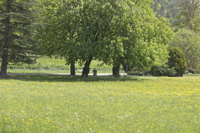 Parc devant le château d'Acquigny
