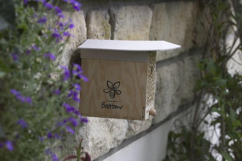 BeeHome installée au jardin