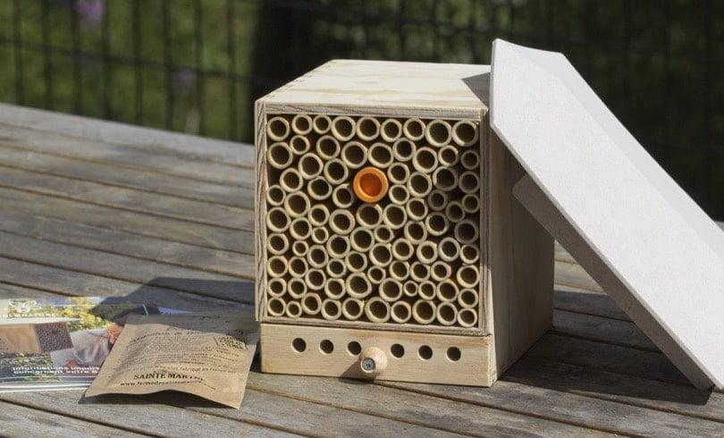 Hôtel à abeilles maçonnes Pollinature