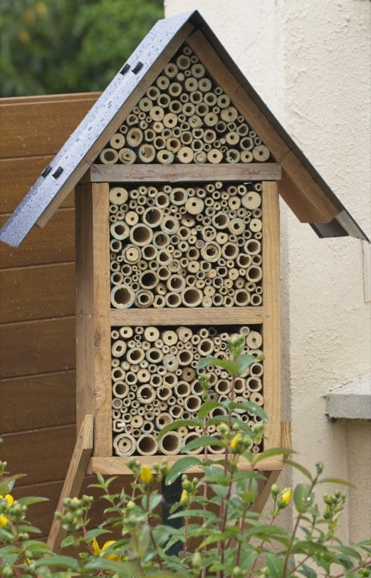 Hôtel à abeilles solitaires