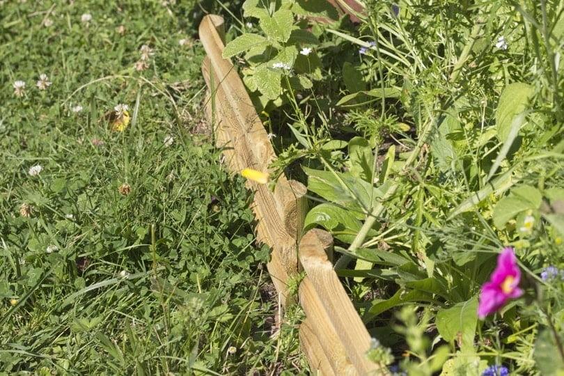 Bordure de jardin en bois pour délimiter la prairie fleurie