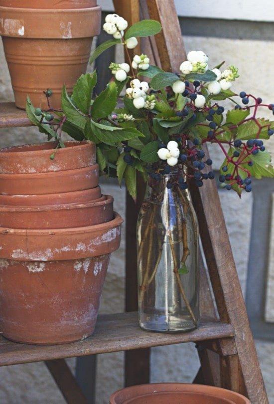 Premier bouquet d'automne