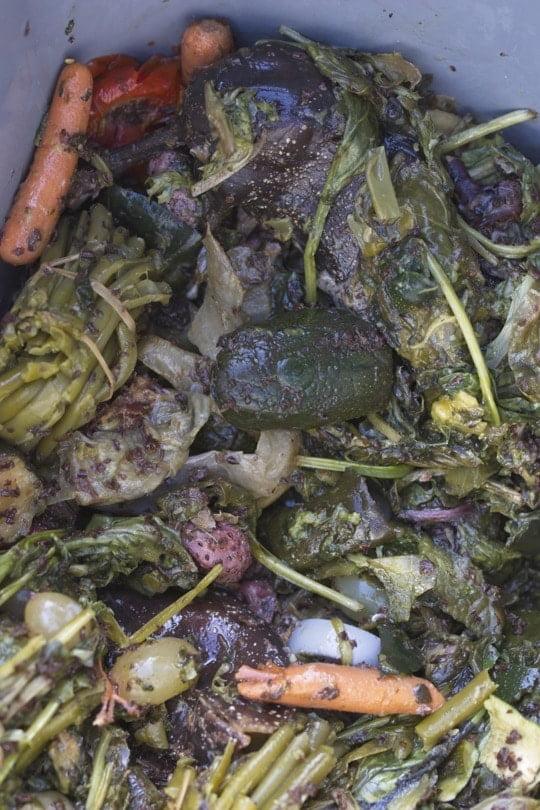 Compost du Bokashi