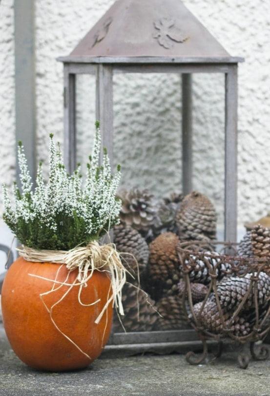 Vase naturel avec une citrouille et de la bruyère