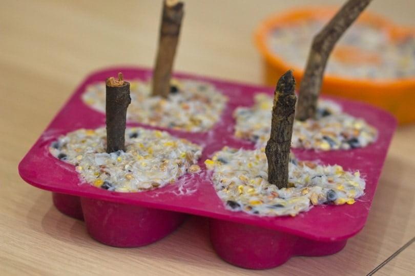 Réalisation des boules de graisse maison pour nourrir les oiseaux