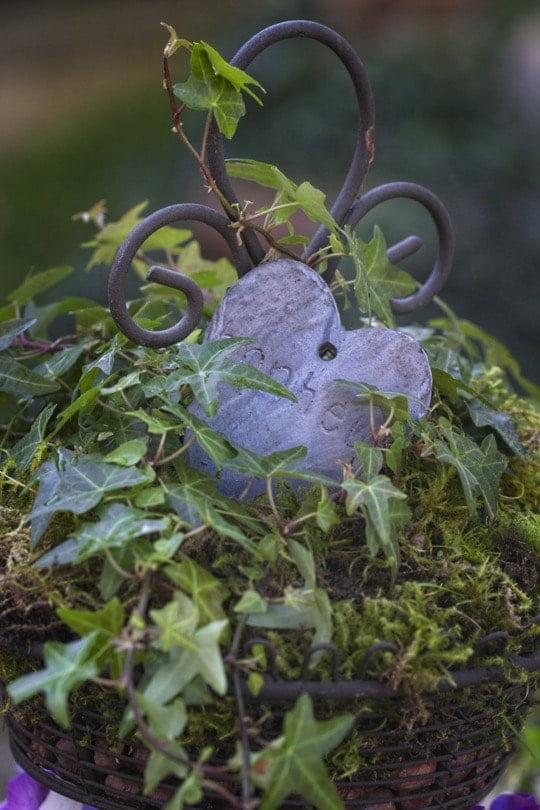 Une corbeille de fruits avec des plantes