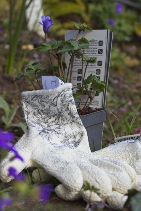 Gants Flower-i de Rostaing