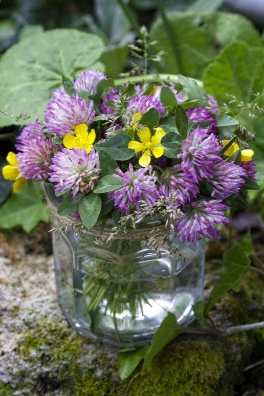 Bouquet de trèfle