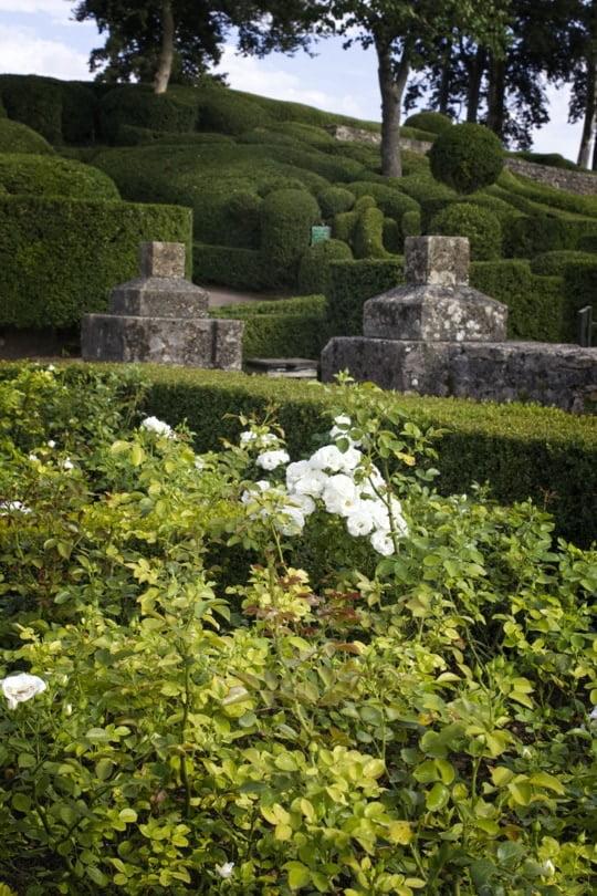 Les jardins de Marqueyssac, l'allée des roses