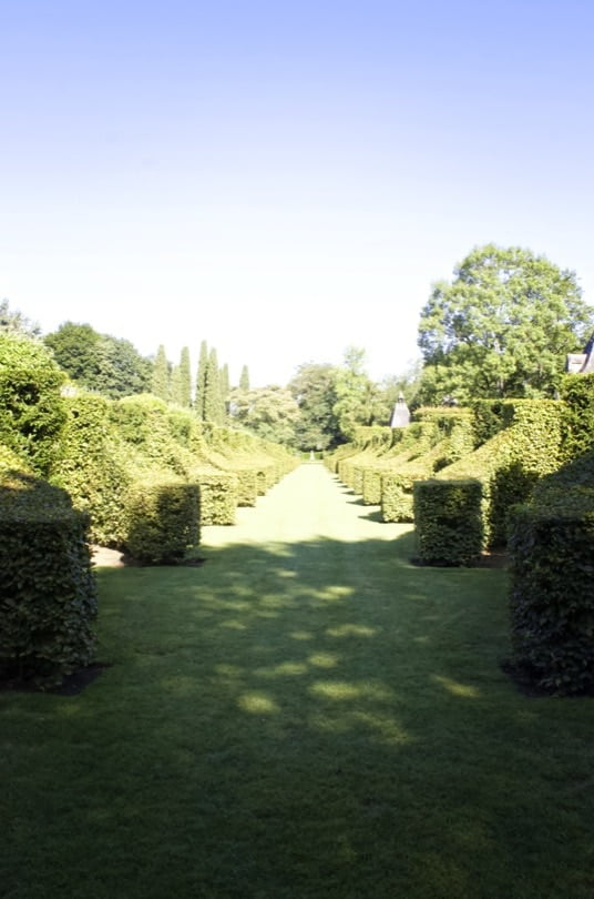 Allée des charmes des jardins d'Eyrignac