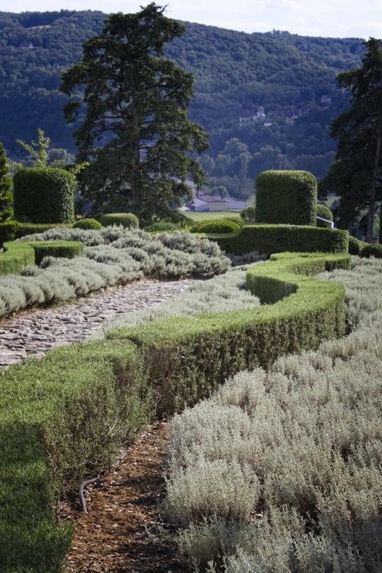 Allée des romarins des jardins de Marqueyssac