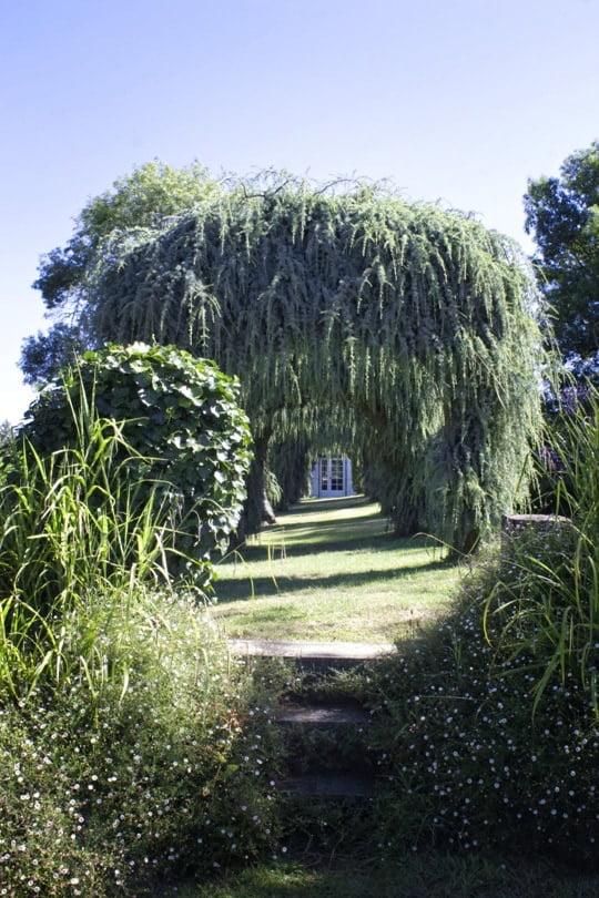 Derrière le Jardin de fleuriste d'Eyrignac