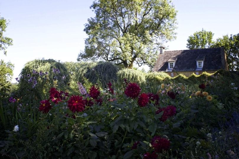 Jardin de fleuriste d'Eyrignac
